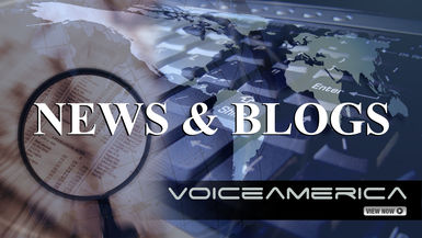 News & Blogs