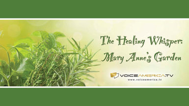 The Healing Whisper: Mary Anne's Garden channel