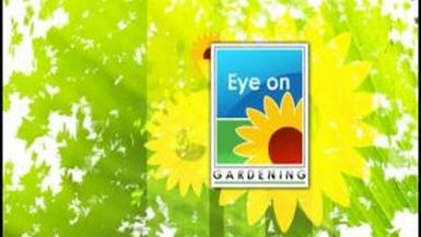 The Best of Eye on Gardening Part 1