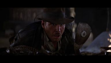 August 16 - Raiders of the Lost IMAX