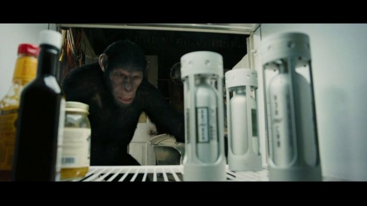 September 19 - Apes Director Needed