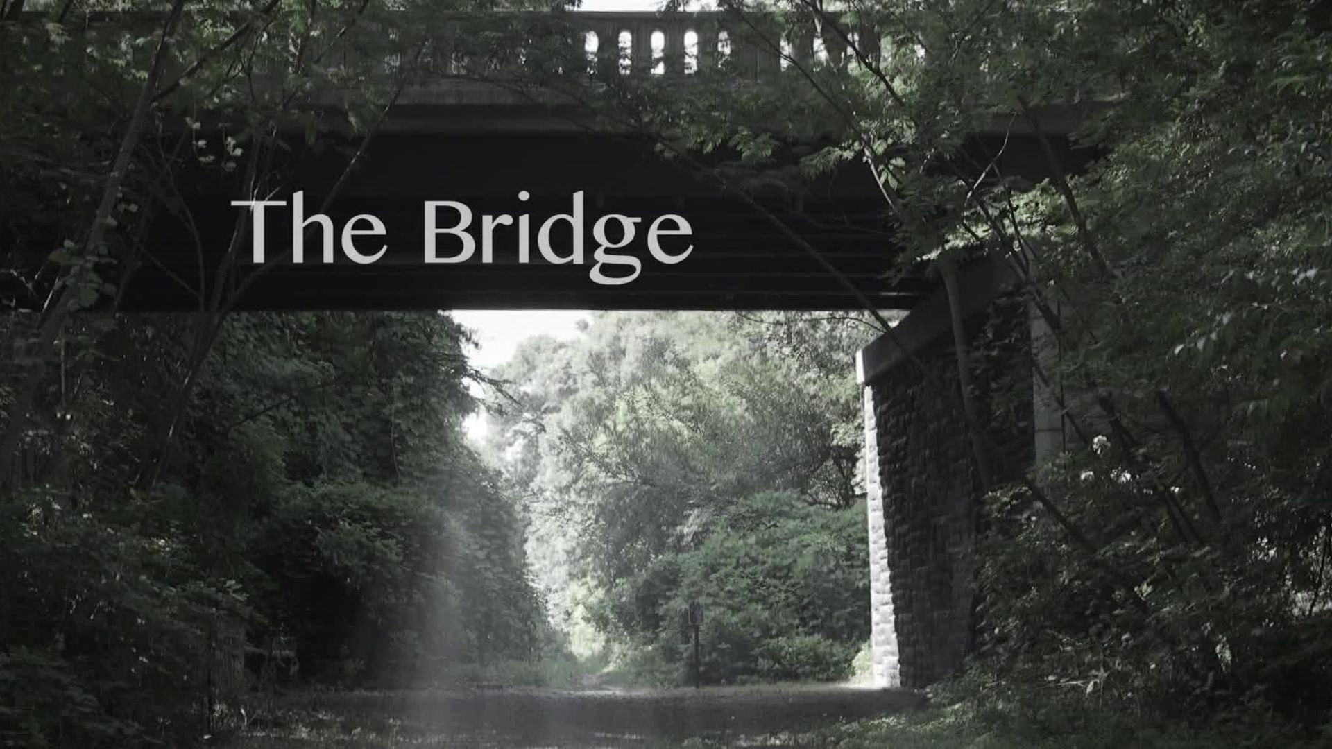 The Bridge (2016) Trailer
