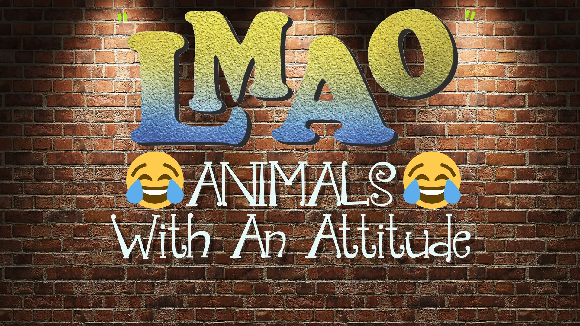 LMAO - Animals with an attitude
