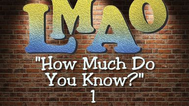 LMAO - How much do YOU know? Episode 1