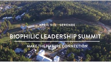 Biophilic Leadership Summit Overview
