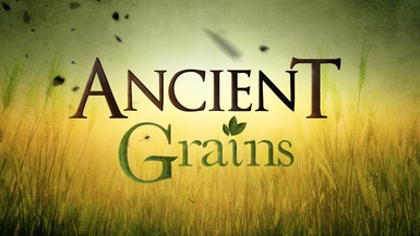 #ANCIENT GRAINS