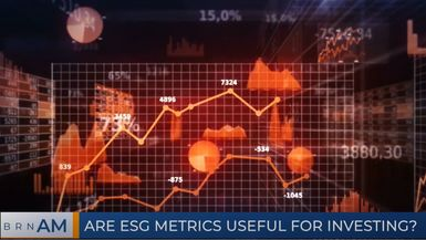 BRN AM | Are ESG metrics useful for investing?