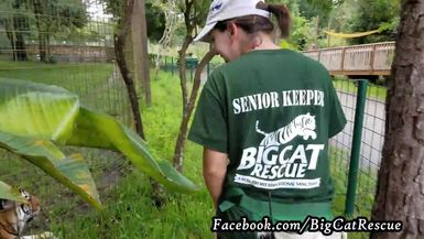 Keeper Karla observing Dutchess to see if any issues should be reported.