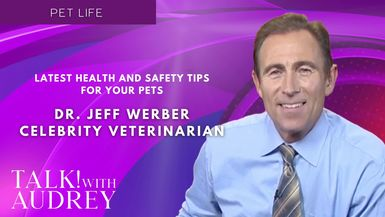 TALK! with AUDREY - Dr. Jeff Werber, Celebrity Veterinarian - Latest Health and Safety Tips For Your Pets