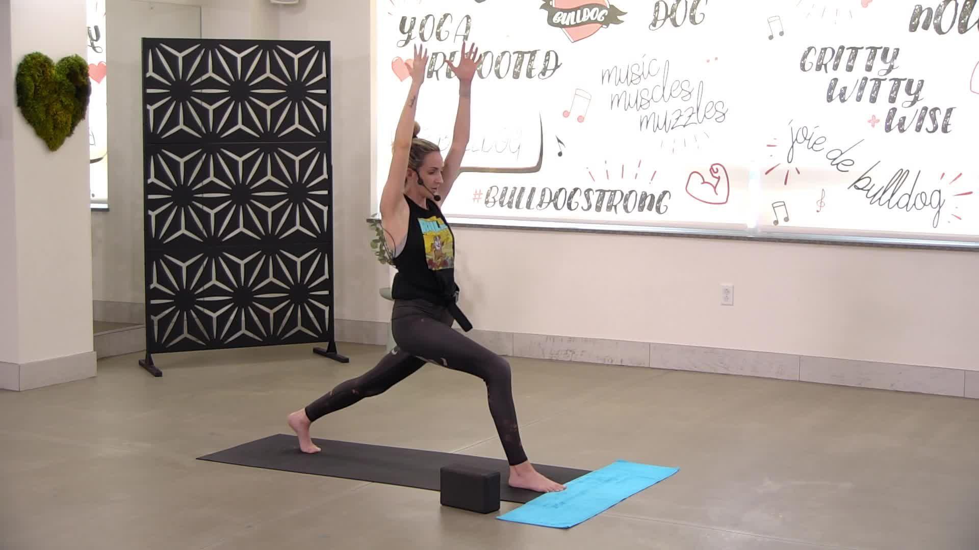 Bulldog Beginner Yoga 5