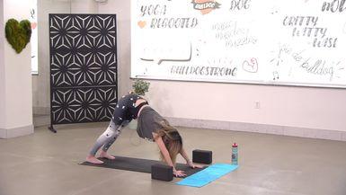 Bulldog Beginner Yoga 2