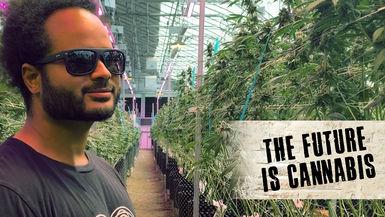 The Future Is Cannabis S1 E3 The Oregon Trail