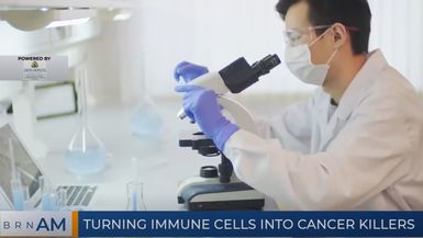 BRN AM   Turning immune cells into cancer killers