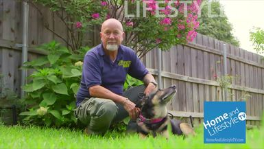 Home and Lifestyle TV Episode 1