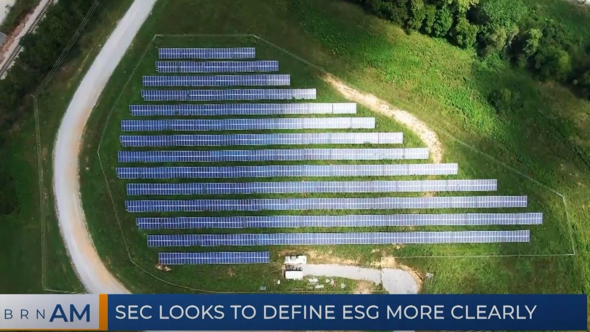 BRN AM | ESG: Fad or Future? & SEC looks to define ESG more clearly