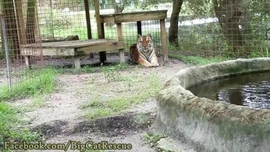 """Kali gets a sicle from Keeper Cindy, but will she push it into the """"river?"""""""
