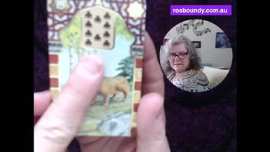 4th September 2021 Daily LENORMAND card spread