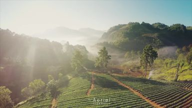 ThailandTV-Aerial Cinematic - Doi Ang Khang Mountain, Thailand