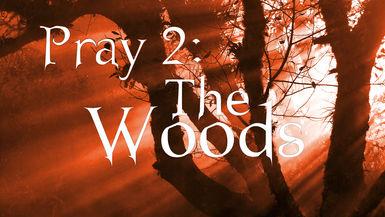 Pray 2-The Woods