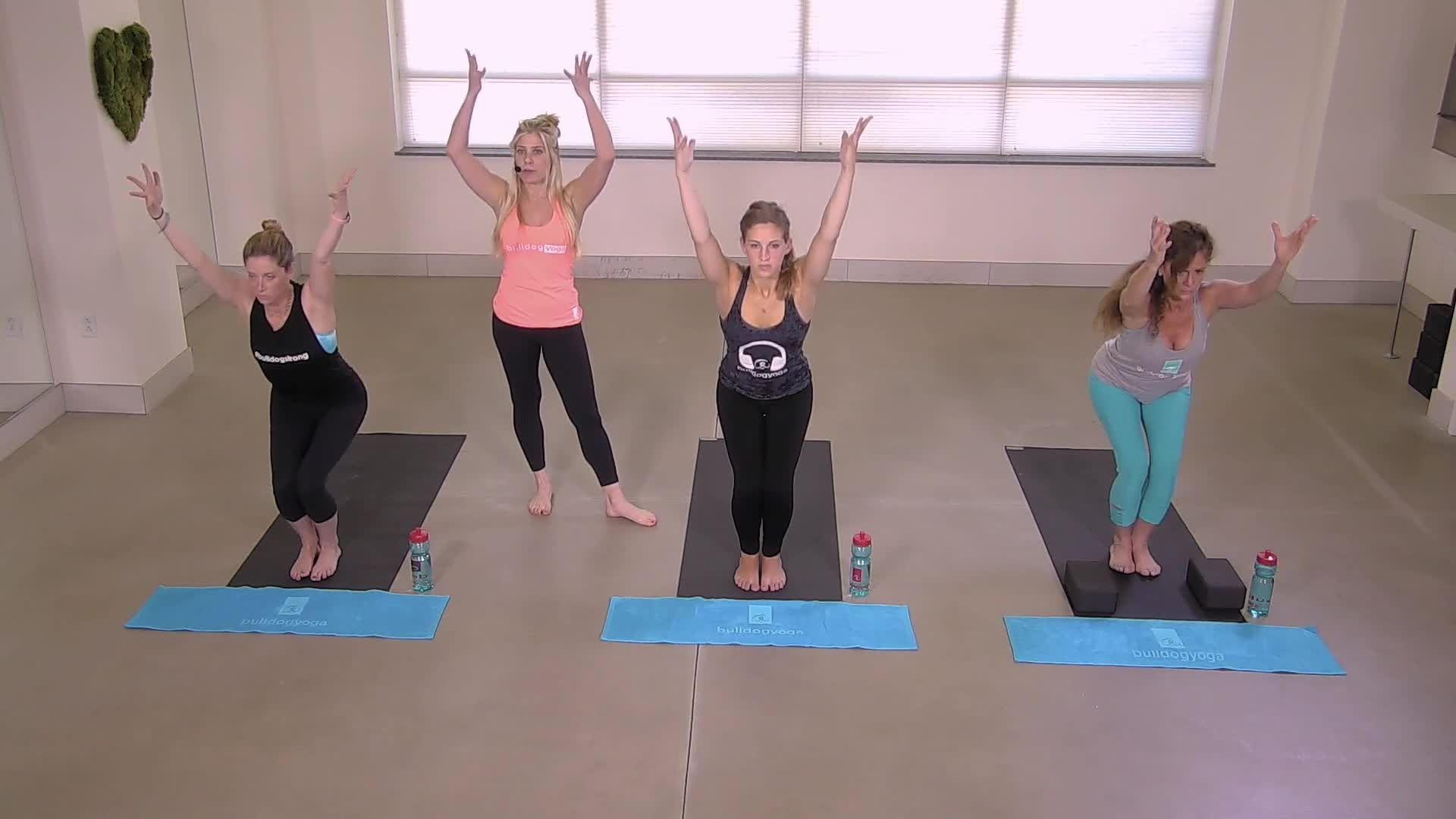 Bulldog Yoga Basics 1
