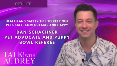 TALK! with AUDREY - Dan Schachner, Pet Advocate and Puppy Bowl Referee - Health and Safety Tips to Keep Our Pets Safe, Comfortable and Happy