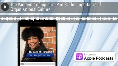 The Pandemic of Injustice Part 3: The Importance of Organizational Culture