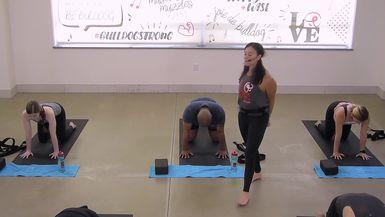 Yoga for Back Pain & Health