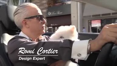 GO INDIE TV - ARTFUL LIVING WITH ROMI CORTIER