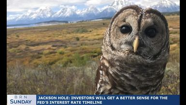 BRN Sunday | Jackson Hole: investors will get a better sense for the Fed's interest rate timeline