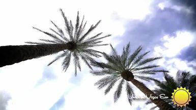 VEGASLIFETV-ACTV-UNDER THE VEGAS SUN EP7_Seth Grabel
