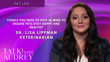 TALK! with AUDREY - Dr. Lisa Lippman, Veterinarian - Things You Need To Keep In Mind To Ensure Pets Stay Happy and Healthy