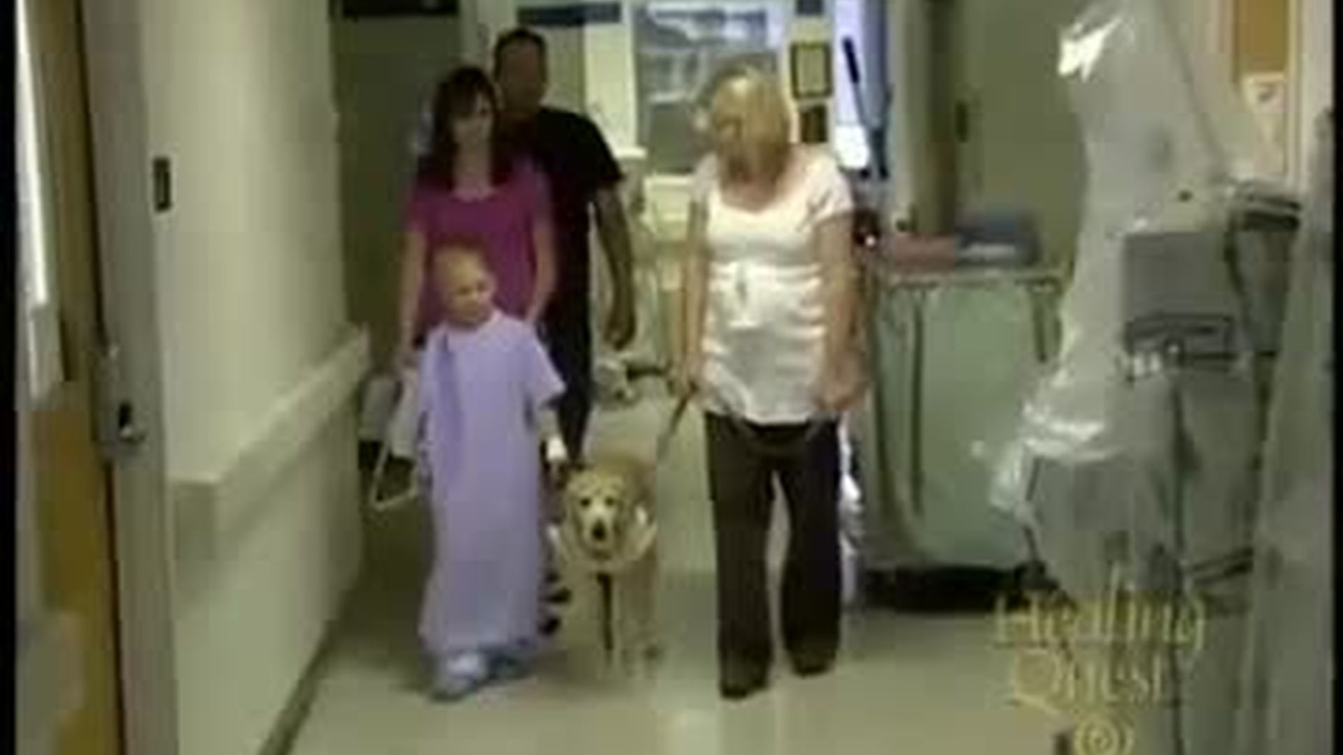 Canine Therapy  (7:44)