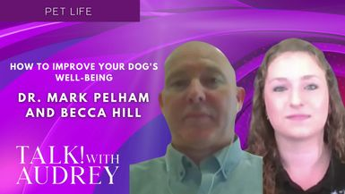 TALK! with AUDREY - Dr. Mark Pelham and Becca Hill - How To Improve Your Dog's Well-Being
