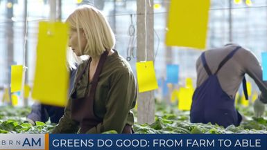 BRN AM | Greens Do Good: From farm to Able