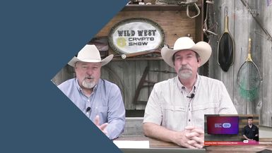 CryptoCurrencyWire Videos-The Wild West Crypto Show Delves into Staking | CryptoCurrencyWire on The Wild West Crypto Show | Episode 129
