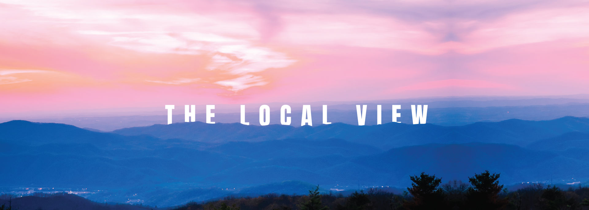 The Local View