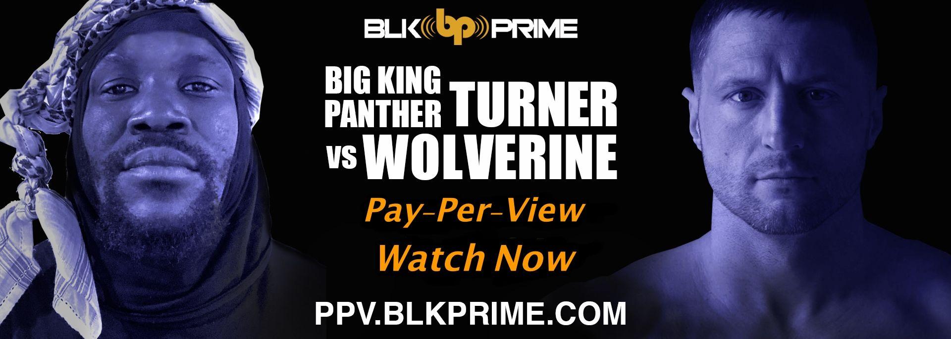 Big King Panther Turner Vs Wolverine