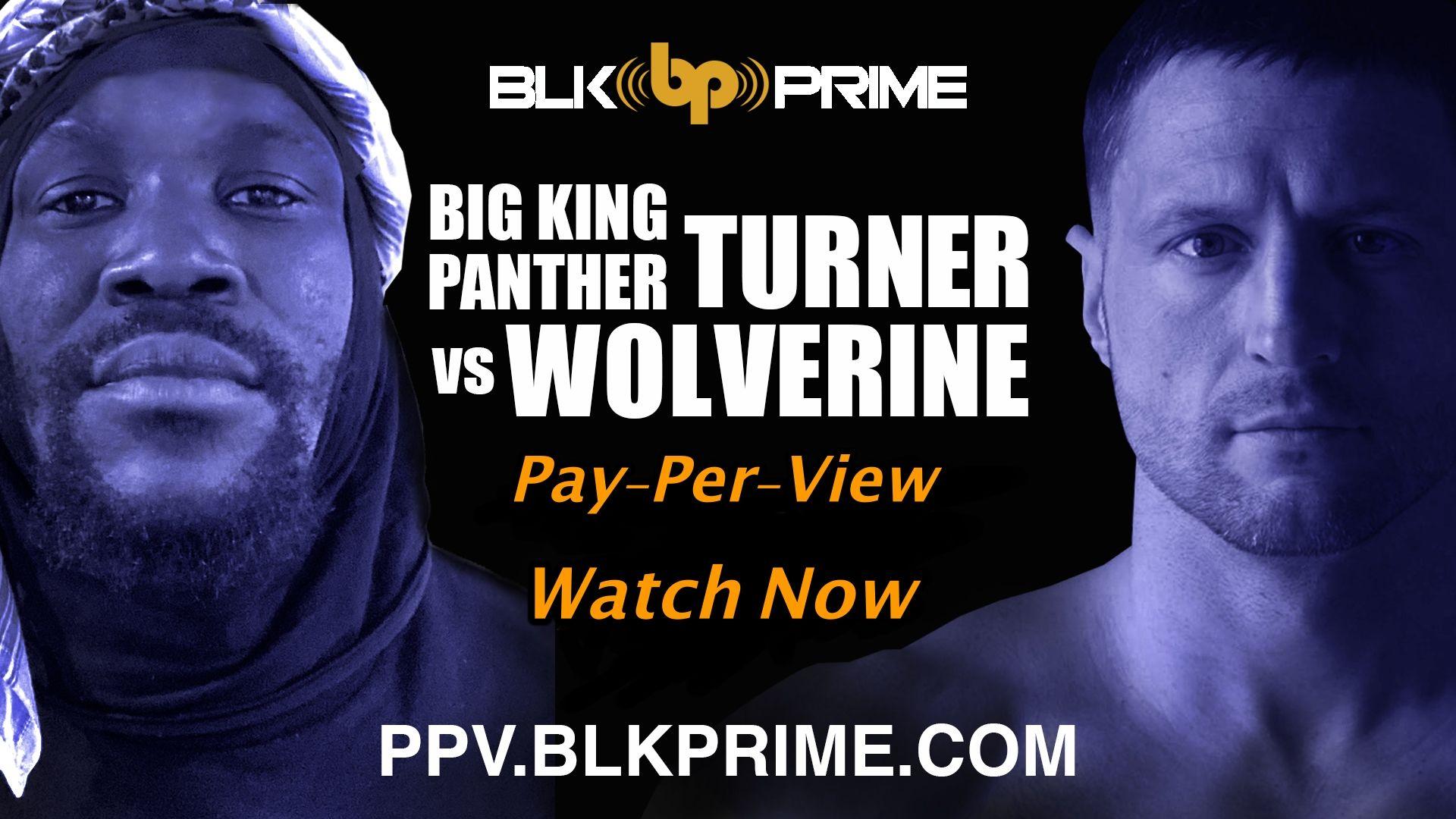 Big King Panther Turner Vs Wolverine BLK Prime Boxing