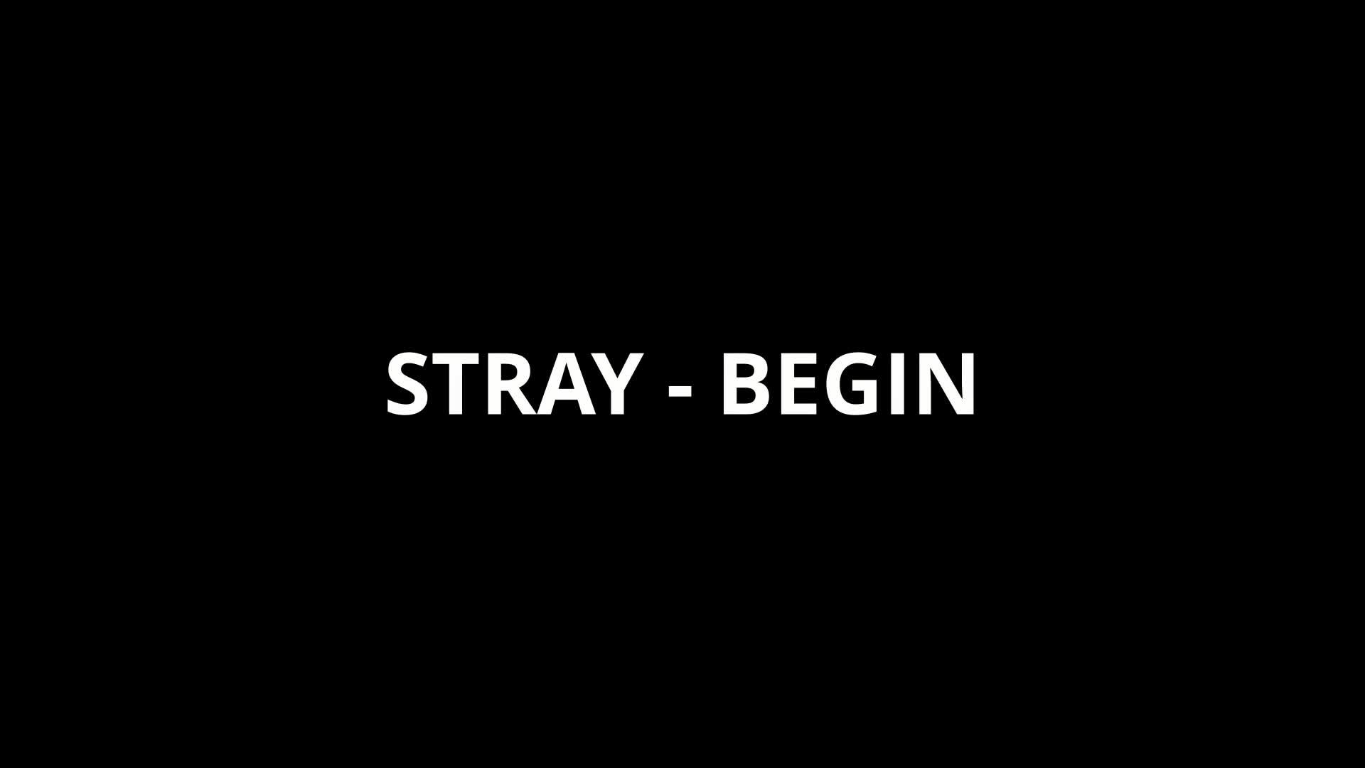 Stray Begin