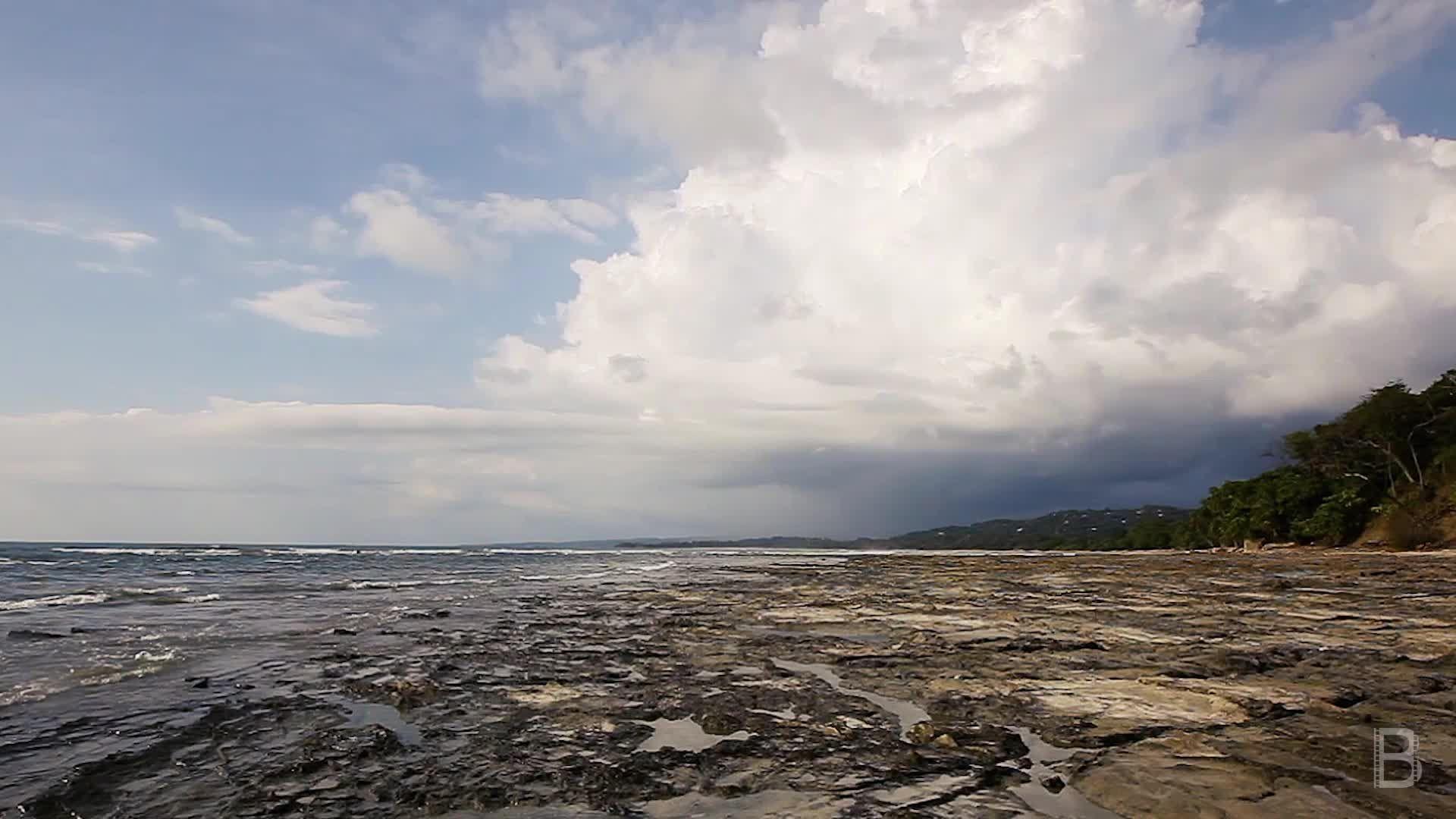 BELLA Presents: daily bello S1 Ep94 Nosara Beach in Costa Rica 2