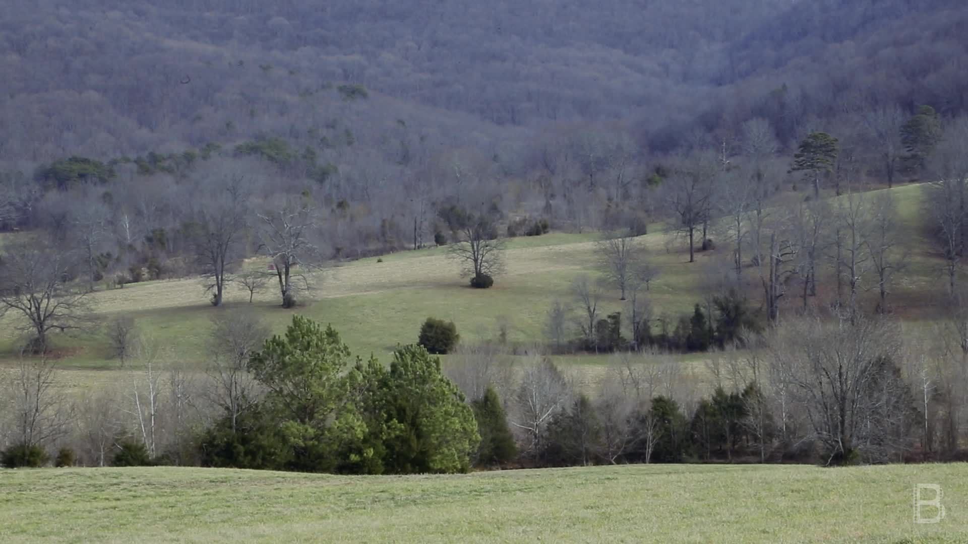 BELLA Presents: daily bello S1 Ep114 Valley and Farm