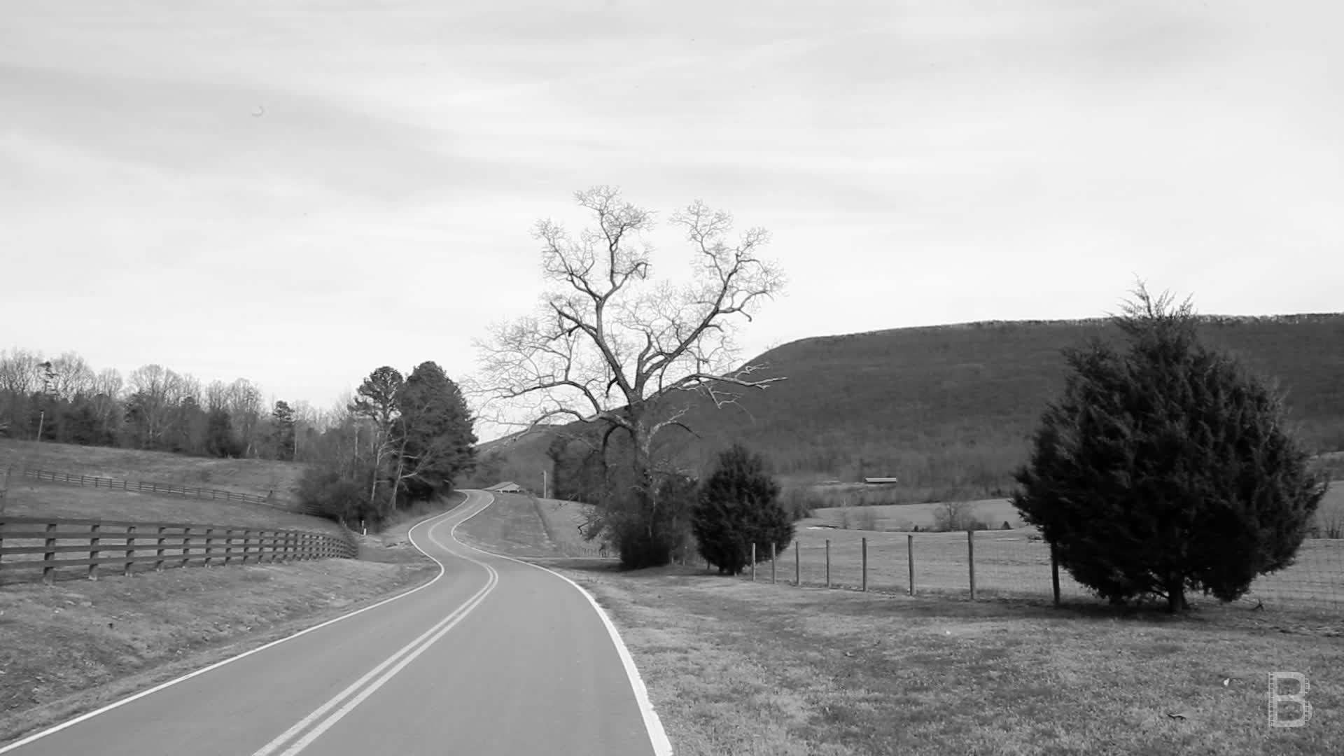 BELLA Presents: daily bello S1 Ep113 Calmness in a Rural Road