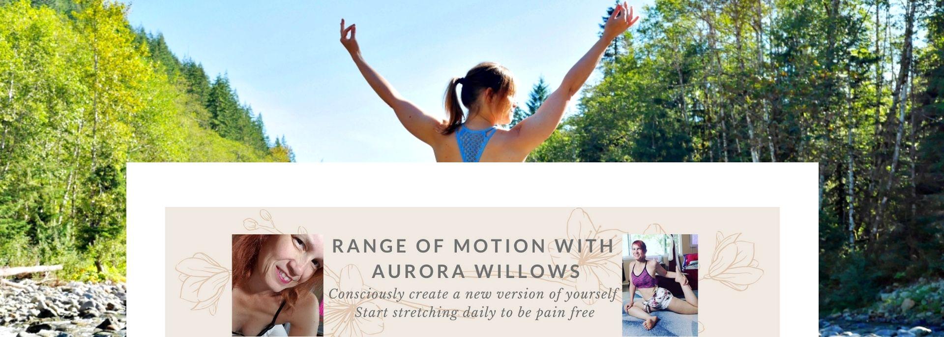 Aurora Willows channel