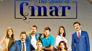 The Shade Of Cinar