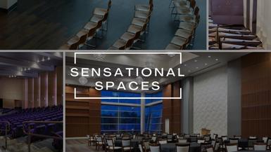 Sensational Spaces